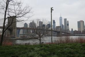 Les bonnes raisons d'aimer Brooklyn